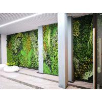 杭州枫桓绿化时尚仿真植物墙