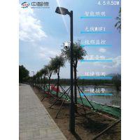 腾讯与中智德联合制作智慧路灯,北京野鸭湖智慧路灯项目