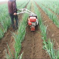 多功能开沟培土机 大葱种植封葱机 农田果园施肥开沟机