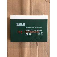 浙江海湖sealake蓄电池FM1230医疗设备蓄电池12V3AH