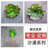 仿真pe沙漠多肉植物哪家的好?厂家支持定做室内装饰仿真多肉植物