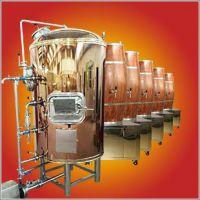 郑州供应自制啤酒机价格