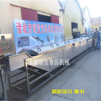 瑞宝QP-1000型气泡清洗机 连续式果蔬清洗机