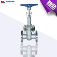 供应DZ40Y超低温闸阀 液氧不锈钢长杆超低温闸阀