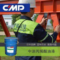 CMP中涂ACRI 700 PRIMER单组份丙烯酸底漆 中涂油漆价格