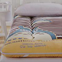 夏季薄床垫冰丝榻榻米床褥子秋冬两用双面1.5M1.8M.2米双人地铺