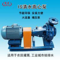 奥泉厂家生产 IS型卧式离心泵 单级单吸清水泵 农田排灌水泵