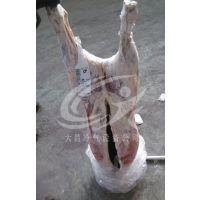 进口羊胴体解冻设备