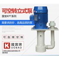 防腐蚀液下泵 国宝槽内立式排污泵 可空转使用的泵浦