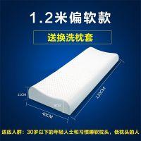 麦琪娜乳胶枕-乳胶枕-金达恒泰 乳胶床垫