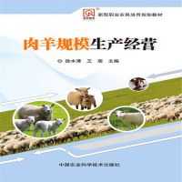 农业养殖:肉羊规模生产经营 作者:徐水清 王 瑞