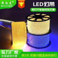 led灯带2835 LED软灯条 霓虹灯 跑马灯 布洛克5050七彩RGB灯带