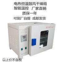 晟杰电热恒温鼓风干燥箱工业烘箱实验室干燥箱工业烤箱