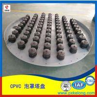 CPVC泡罩塔盘生产厂家