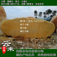 云来景观供应大型景观石 黄蜡石 天然黄石 招牌石