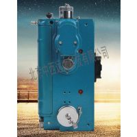 中西光干涉式甲烷测定仪(双电池) 型号:XS11-CJG-10库号:M305318
