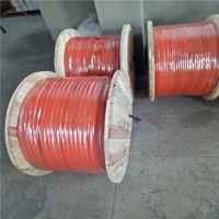 浅水环境用电缆 JHS防水电缆