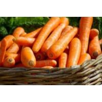宏鸿一站式配送——胡萝卜