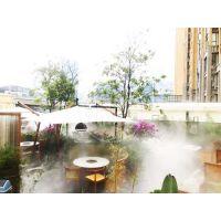 锦胜景区水雾造景花园餐厅水景/湿地环保高压景观喷雾设备