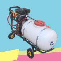 科圣 手推打药机 小型四轮喷雾器厂家 家用型地面清洗机 手推式农药杀虫机械