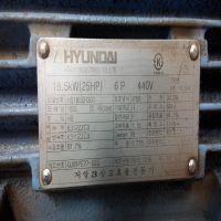 现代电机HYUNDAI HEAVY INDUSTRIES HS185SR301 18.5KW