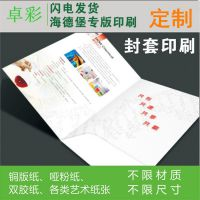 高档企业封套定制精致画册宣传单印刷公司产品简介四折页定做印刷