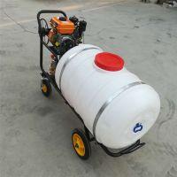 农用汽油打药机手推式大棚果园专用杀虫打药机果树园林喷雾器