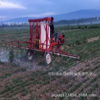 豪华版农用三轮是打药车高射程高压大喷福厂家直销可定制
