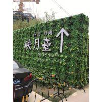 塑料假草皮墙谁家质量好?东莞维阿视界 老厂直销 量大从优 质美价廉