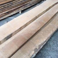 金威木业欧洲 榉木 毛边板 木板 地板料 家具材 木料 实木板A级AB级