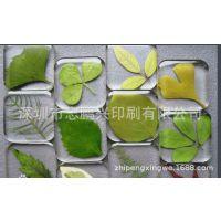 定做透明标贴 透明胶垫 透明软胶标牌 任意琥珀封工艺挂件胶贴