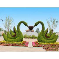贵州造型厂家 贵州绿雕制作厂商生产