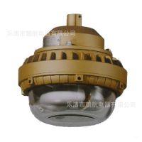 SBD1110-YQL免维护节能防爆灯 FGV6246