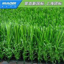 扬州邗江人造草坪地毯球场方案仿真绿化草坪地毯来样定做代销