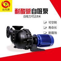广东台风耐酸碱调节池耐酸碱自吸泵 塑料自吸泵厂家 输送效率高