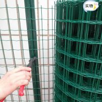 四川养殖绿色铁丝网价格 临沂养鸡铁丝网 浸塑荷兰网