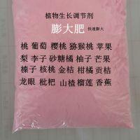 供应樱桃膨大剂 植物生长调节剂 红灯 陕西