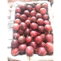 百香果广西水果代理一手货源批发一件代发
