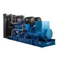 大型发电机组900kw 潍柴博杜安水冷无刷柴油发电机组厂家价格