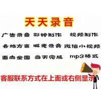 新年春节武汉黑鸭广告录音下载叫卖成品广告词