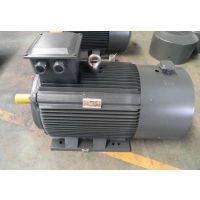 minimotor 电机 BCRD2000/D