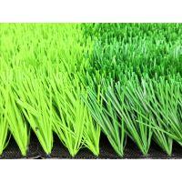 泰山足球场人造草坪
