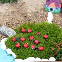 微景观迷你小瓢虫 木质小甲虫 卡通甲壳虫 苔藓微景观多肉摆件