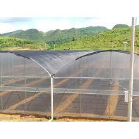 云浮温室大棚配件 蔬菜大棚造价 蔬菜大棚厂家