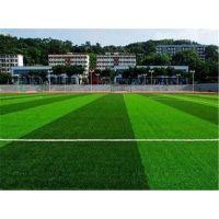 山东中奥篮球场建设 篮球场施工造价 排球场施工 足球场人造草坪