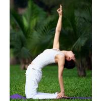 聊城瑜伽教练培训最新行情