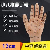 上海经络通小儿特定穴位推拿专用手按摩手部模型左手儿童咳嗽腹泻