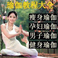 瑜伽视频教程高清零基础初级到高级入门精通瑜伽教学自学培训课程