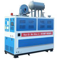 燃气模温机 工业锅炉 模温机 CT-20Q 室燃炉 免环检