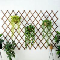 JFJS创意时尚客厅房间墙上装饰品田园个性小清新店铺餐厅墙上挂件